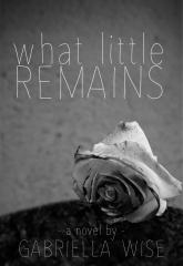 Cover for What Little Remains